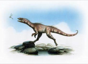 Dinosaur recently discovered in the U.K. gets a name