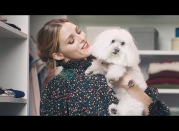 Olivia Palermo and her pup get dressed for the holidays (Video)